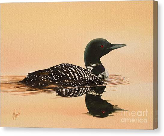 Loons Canvas Print - Serene Beauty by James Williamson
