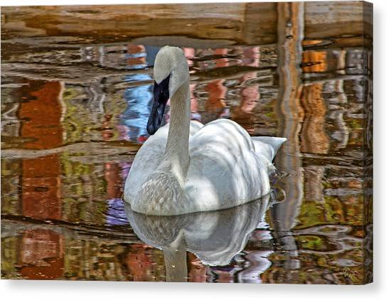 Serenity In Color Canvas Print by Rick Lewis
