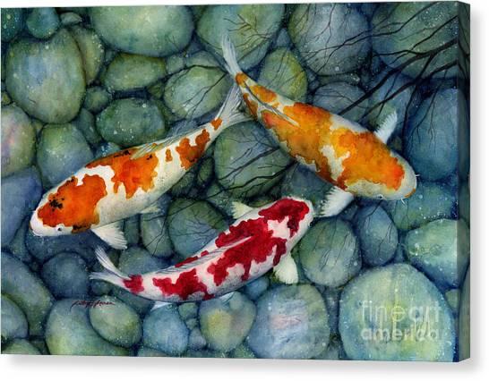Koi Canvas Print - Serenity Koi by Hailey E Herrera