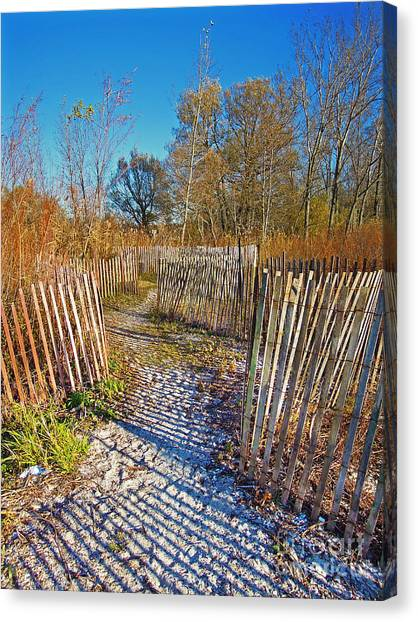 Serenity Trail.... Canvas Print