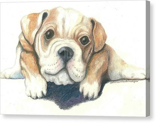 English Bull Dogs Canvas Print - Serg by JoAnn Morgan Smith