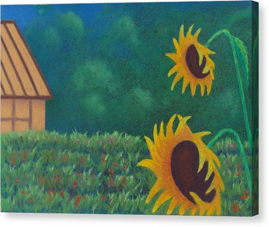 Sergi's Sunflowers Canvas Print