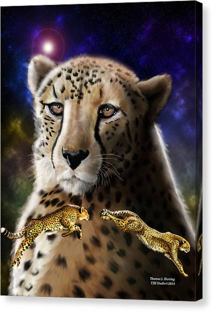 First In The Big Cat Series - Cheetah Canvas Print