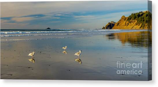 Serinity At The Coast Canvas Print