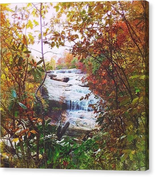 Appalachian Mountains Canvas Print - Drink The Day by Simon Nauert