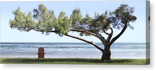 Shade Tree Panoramic Canvas Print