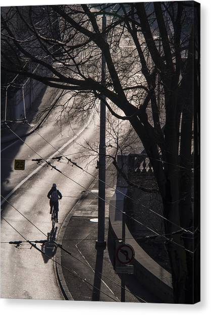 Shadow And Light Canvas Print