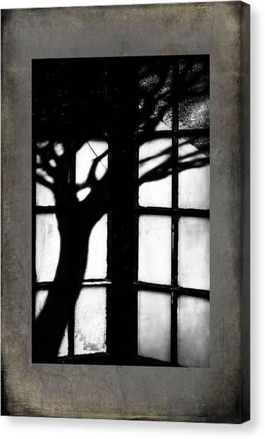Shadow Canvas Print by Bobbi Feasel