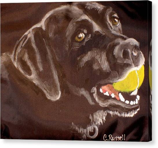 Shadow With Ball Canvas Print