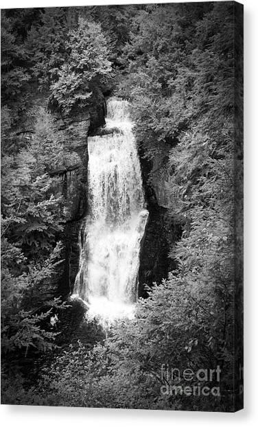 Shadowed Falls Canvas Print