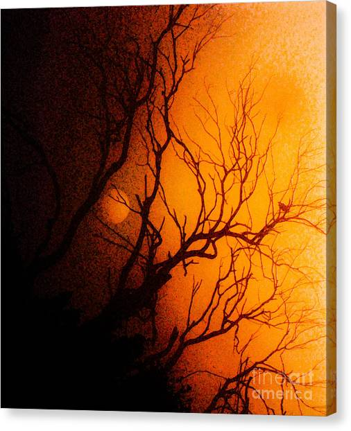 Shadowed Canvas Print