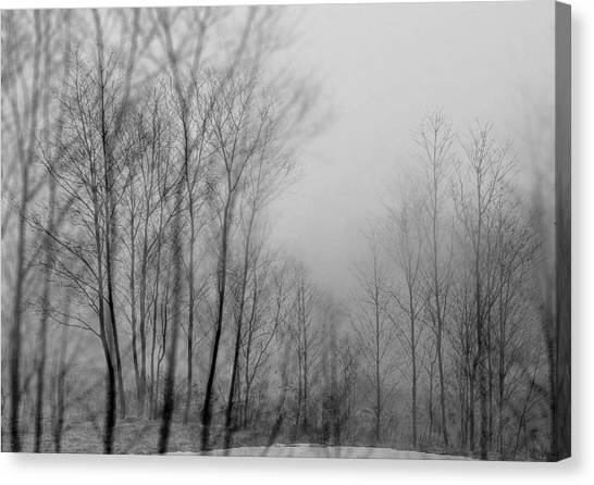 Shadows And Fog Canvas Print