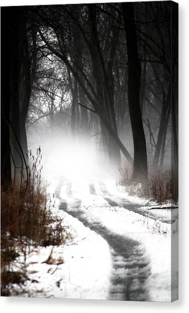 Shadows And Mist At Mentha Canvas Print