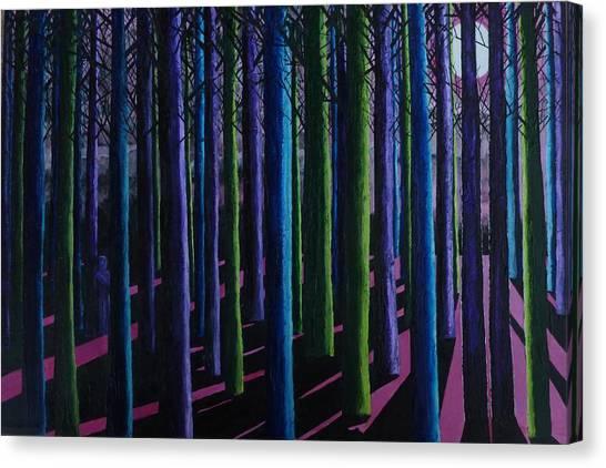 Shadows And Moonlight Canvas Print