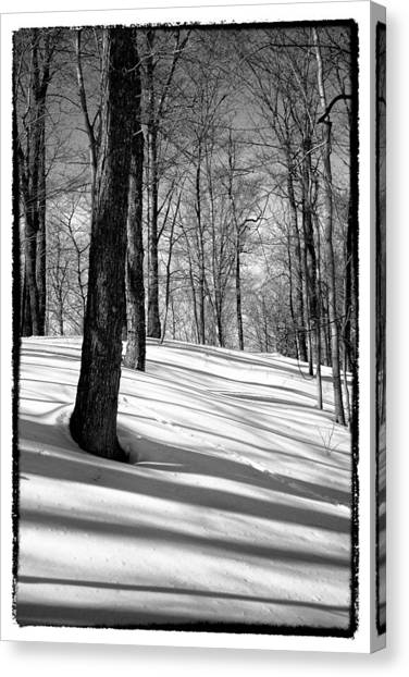 Chairlift Canvas Print - Shadows At Mccauley Mountain by David Patterson