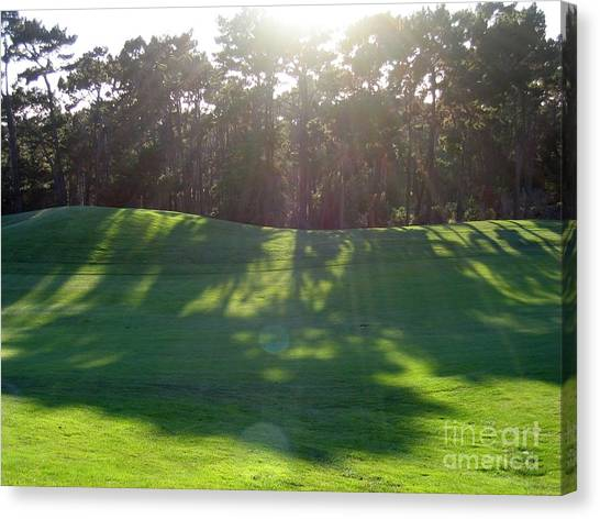 Shadows At Poppy Hills Canvas Print