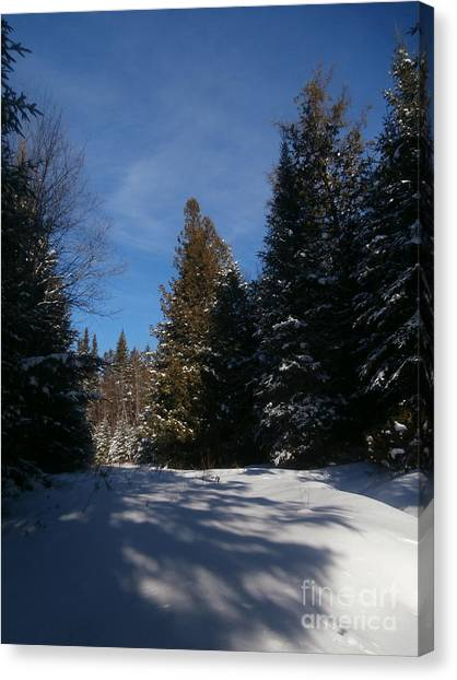 Shadows In The Snow Canvas Print by Steven Valkenberg