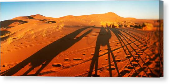 Sahara Desert Canvas Print - Shadows Of Camel Riders In The Desert by Panoramic Images