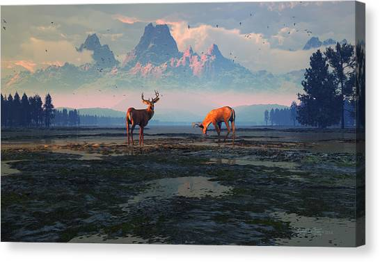 Shadows Of Creation Canvas Print