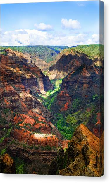 Shadows Of Waimea Canyon Canvas Print