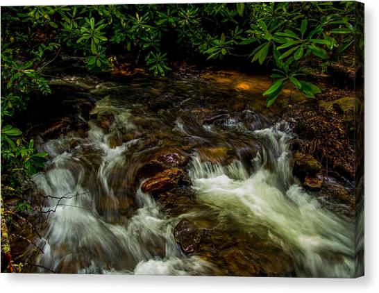 Shady Brook Canvas Print by Russ Burch