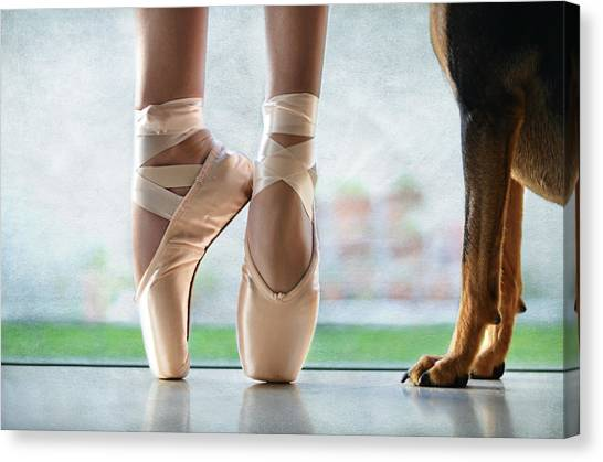 Ballet Shoes Canvas Print - Shall We Dance by Laura Fasulo