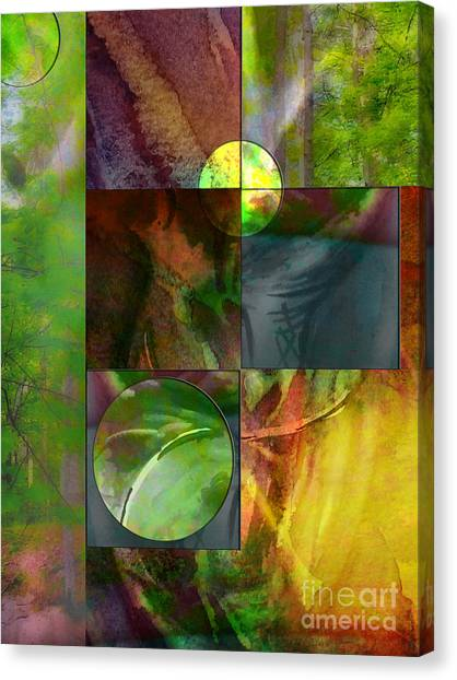 Shapes In Nature Canvas Print