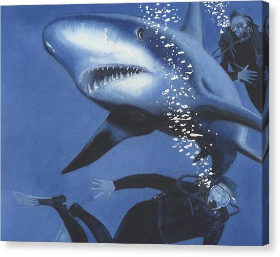 Sharkbait Canvas Print by Denny Bond