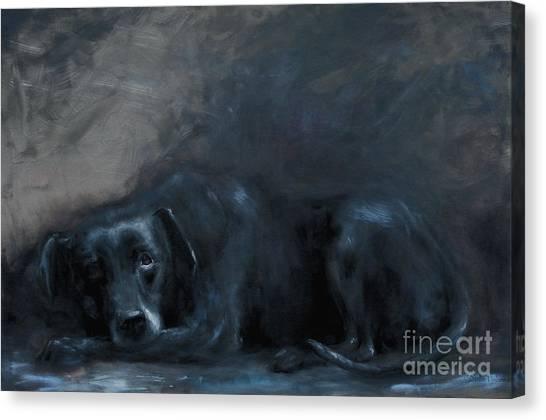Sheba- Portrait Of A Homeless Man's Beloved Pet Canvas Print by Stella Violano
