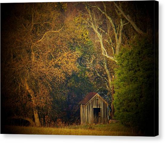 Shed And Trees Canvas Print by Joyce Kimble Smith