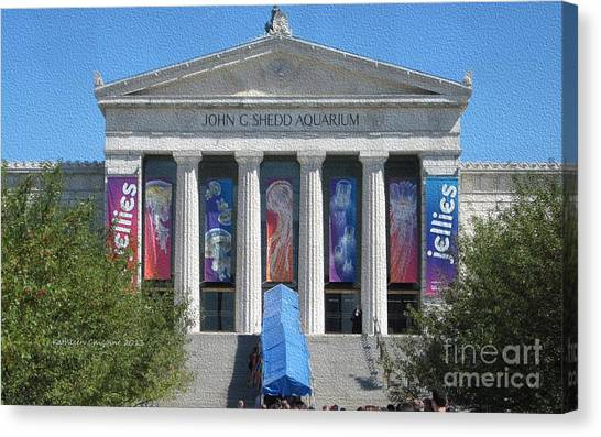 Shedd Aquarium-1 Canvas Print