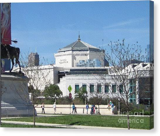 Shedd Aquarium-2 Canvas Print