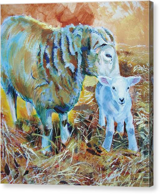 Sheep And Lamb Canvas Print