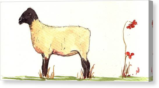 Sheep Canvas Print - Sheep Black White by Juan  Bosco