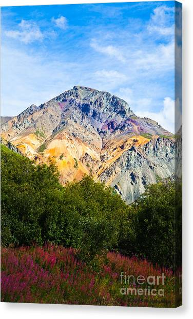 Sheep Mountain Alaska   Canvas Print
