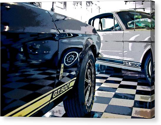 Shelby Mustangs Canvas Print