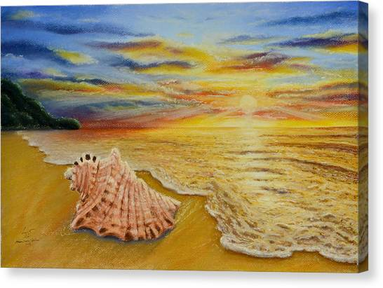 Shell At Sunset Canvas Print
