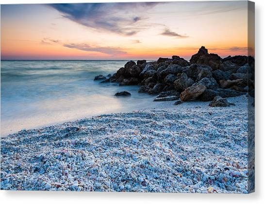 Shell Beach Canvas Print