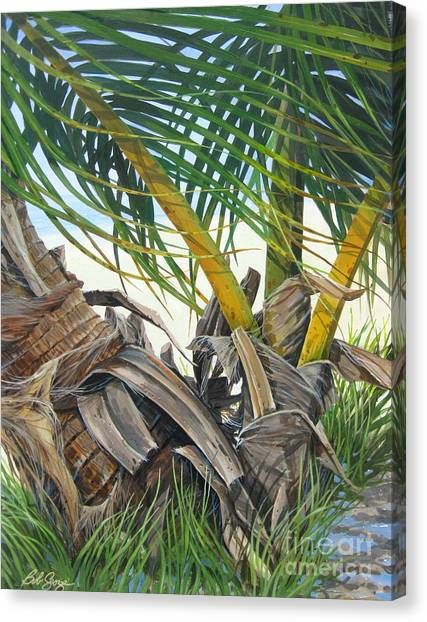 Sheltering Palms Canvas Print