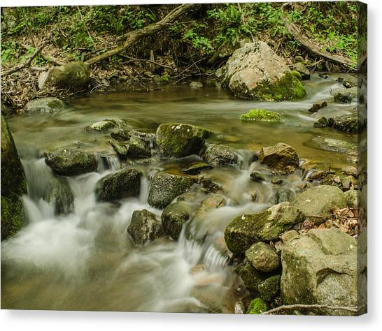 Brian Rock Canvas Print - Shenadoah Stream by Brian Rock