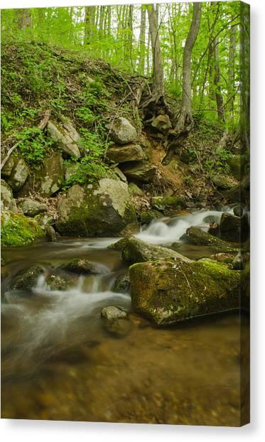 Brian Rock Canvas Print - Shenandoah Stream No. 2 by Brian Rock