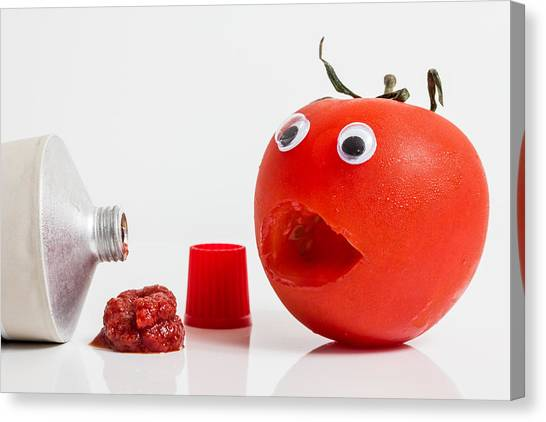 Shocked Tomato. Canvas Print by Gary Gillette