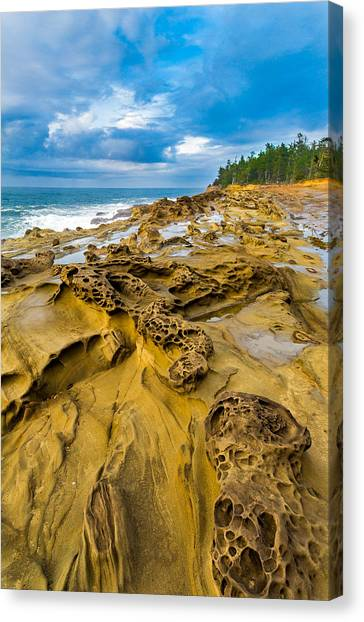 Oregon State Canvas Print - Shore Acres Sandstone by Robert Bynum