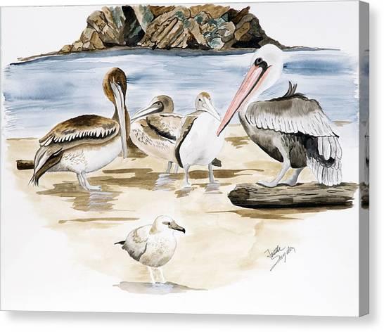 Shore Birds Canvas Print