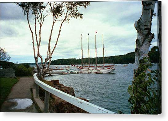 Shore Path In Bar Harbor Maine Canvas Print