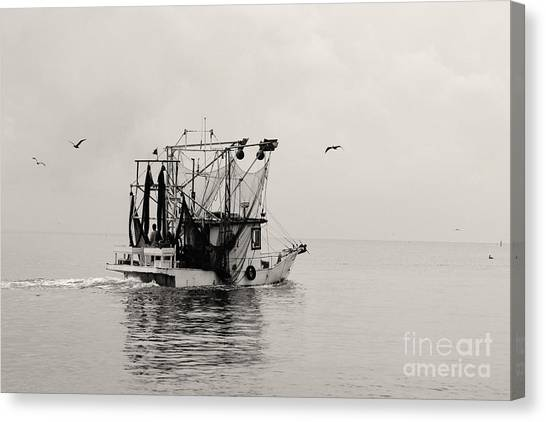 Show Down Canvas Print by Russell Christie