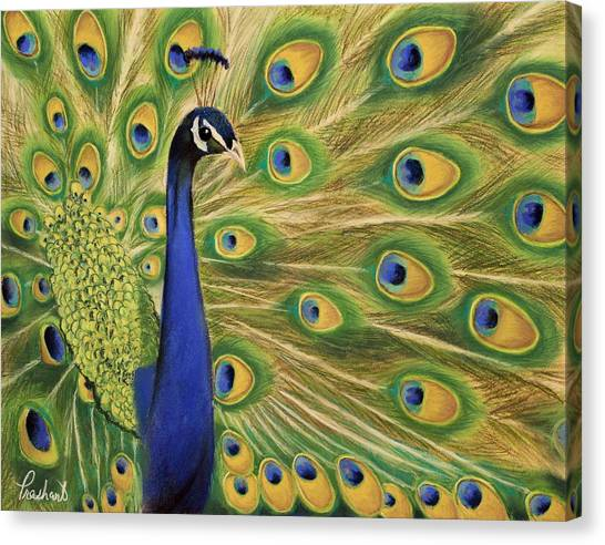 Showoff - Peacock Painting Canvas Print by Prashant Shah