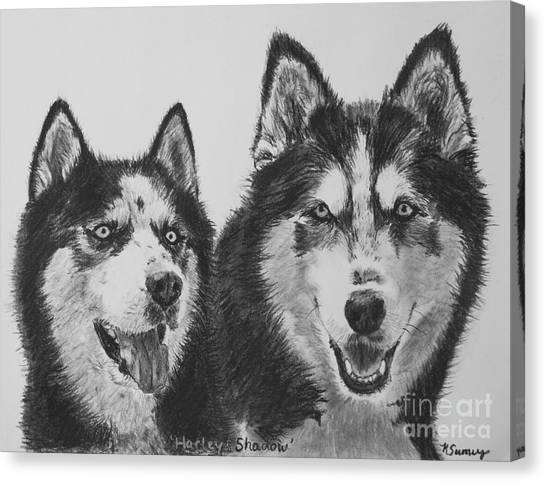 Siberian Husky Dogs Sketched In Charcoal Canvas Print