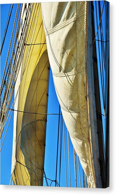 Sibling Sails Canvas Print