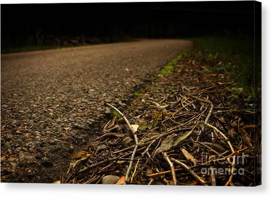 Side Of The Road Canvas Print by Jolanta Meskauskiene